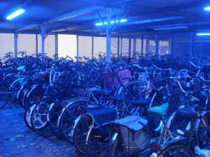 Bicycles in Rotterdam